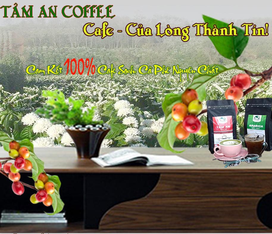 cafe-sach-ca-phe-nguyen-chat